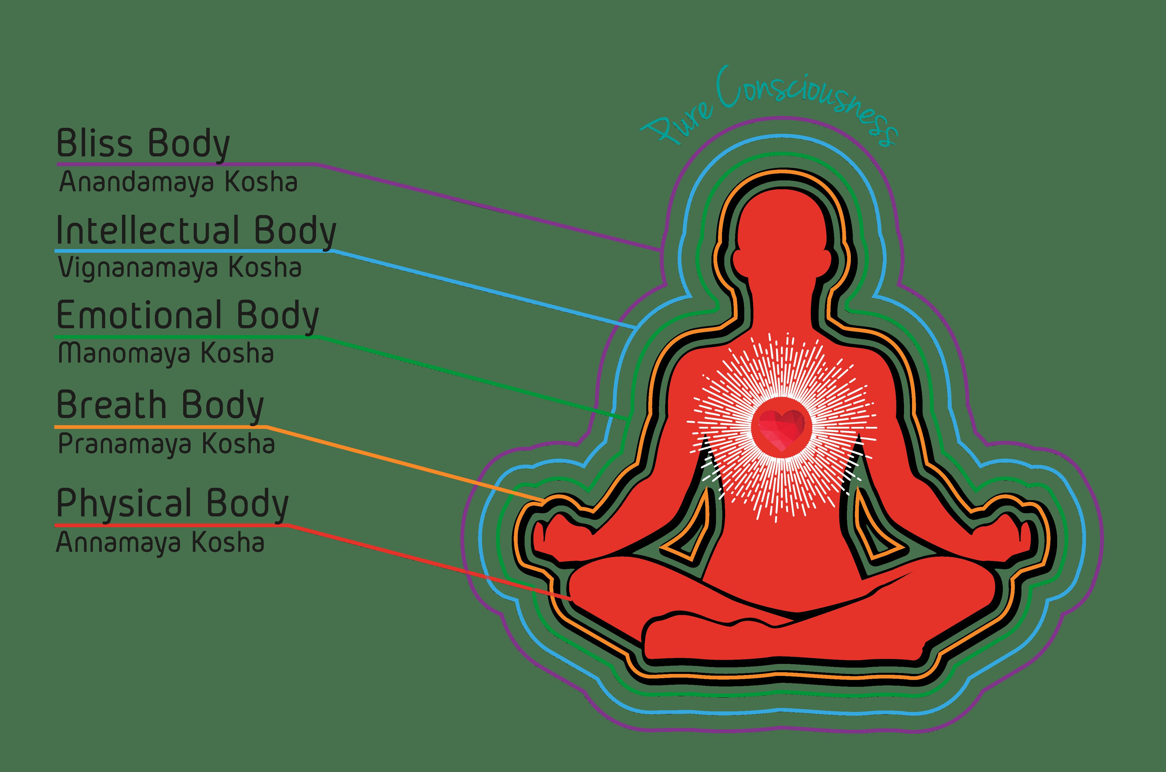 Life of Wellness Institute - Pancha Maya Kosha